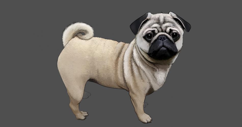 listing-Pug_Done.png